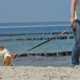 Hundestrand Ostsee Strandspaziergang