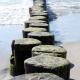 Buhnen am Ostseestrand im Wellnessurlaub